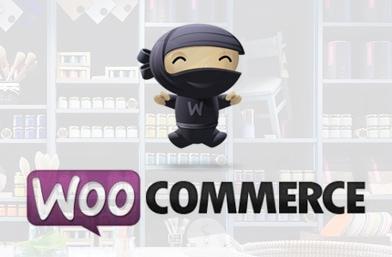 ווקומרס WooCommerce חנות ווירטואלית