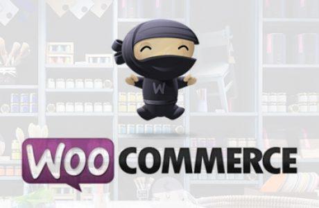 ווקומרס: חנות קטנה/גדולה ומטריפה